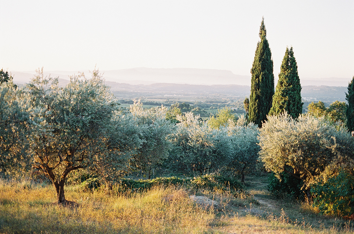 Feather and Stone Photography Rustic Italian Landscape